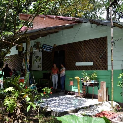 Estación de Investigación y Educación Robles-Kaufmann, Tortuguero